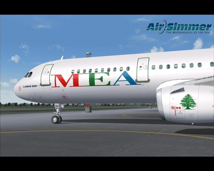MEA1_1.jpg